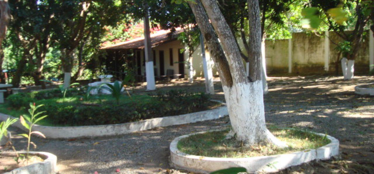 CHÁCARA NA REGIÃO DA GUIA – 5.20 HECTARES